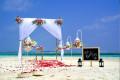 wedding-planners-blueprint-a2z-small-0