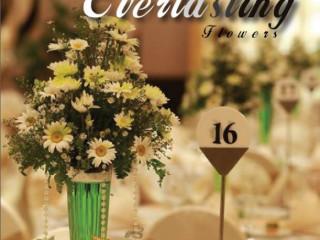 Florists & Decor-Everlasting Flowers