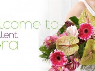Florists & Decor -Excellent Flowers