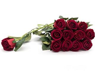 15 VELVETY RED ROSES BOUQUET