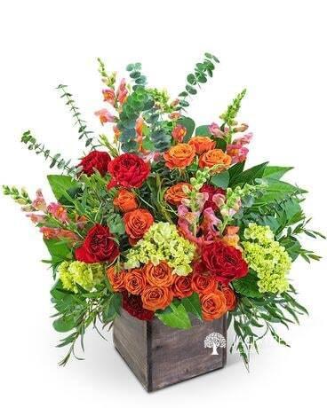 floral-fantasy-big-0