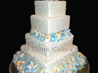 Dilna Cakes