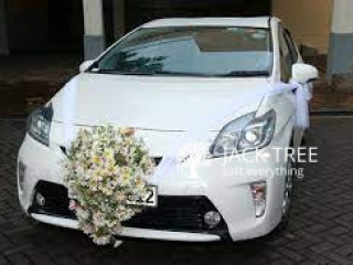 Luxury Wedding Cars Premio G Superior New Face for Rent