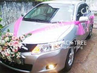 Rayon wedding cars