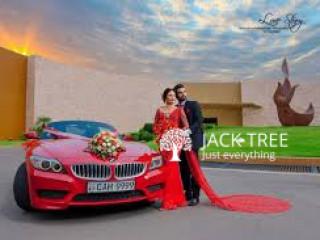 Dream Wedding Cars