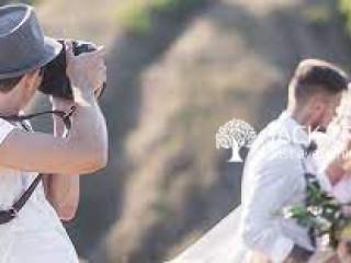 Studio Climax Wedding Photography