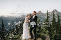 wedding-live-streaming-services-with-videography-small-0