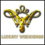bridal-wear-luxury-weddings-big-0
