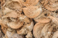 coconut-husks-small-0