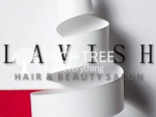 Lavish Hair & Beauty Salon-Makeup Artists & Hairstylists