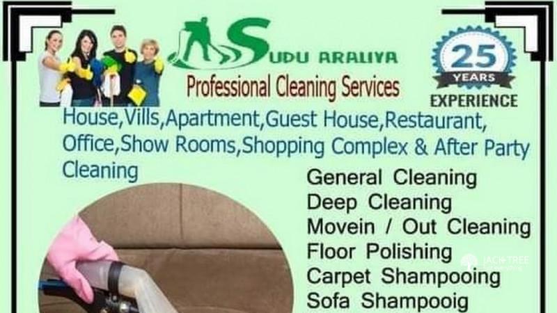 sudu-araliya-professional-cleaning-service-077516812-big-0