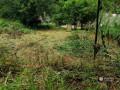 a-residential-land-for-sale-galahitiyawa-kuliyapitiya-small-0