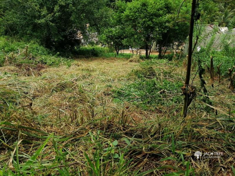 a-residential-land-for-sale-galahitiyawa-kuliyapitiya-big-0