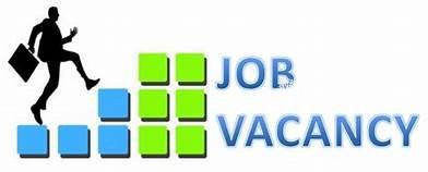insurance-service-assistant-job-vaccancy-havelock-city-big-0