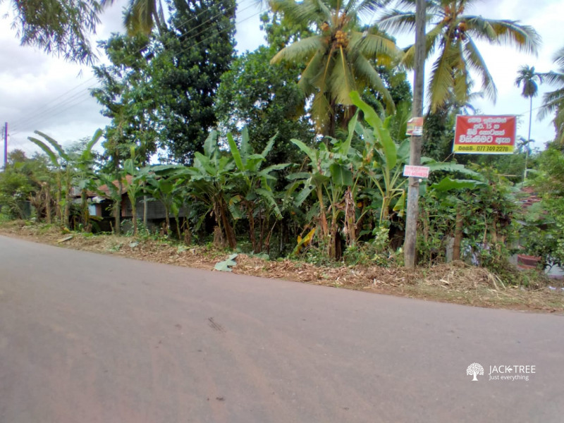 land-for-sale-in-ganemullaface-to-road-big-0