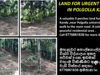 A valuable land for immediate sale in Kandy