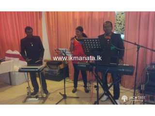 Three Piece Music Band for any Occasions