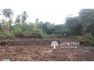 90 Perch Land for Sale in Pallama Town