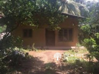 House for rent 4 Perches house 2 Bedrooms one bedroom with attached bathroom, 2 Bathrooms, one more servant