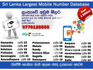 Number Data Base for SMS Marketing for Election