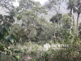 Agricultural Land Urgently Selling - Matale/Kirigalpoththa