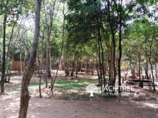 Running hotel with 2acr land for sale in Sigiriya