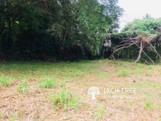 Empty Land for Sale Near Gampaha And Ganemulla