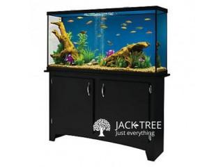 Making Fish Tanks