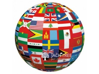 Global Visa guidance Consultant services