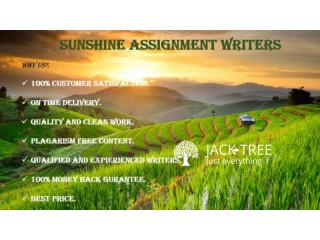 SUNSHINE ASSIGNMENT WRITERS
