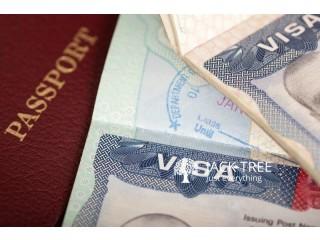 Visa Sponsor