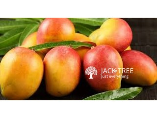 Mango-(sale,buy and transport)
