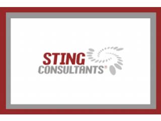 STING Consultants