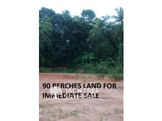 90 PERCHES LAND FOR IMMEDIATE SALE IN KAMARAGODA –MINUWANGODA