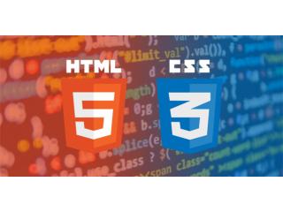 CSS/HTML Developer
