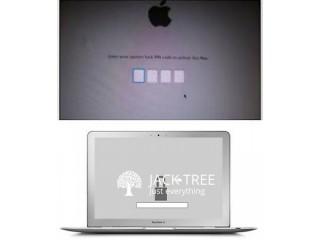 Apple EFI Password Unlocking Service