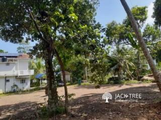 Bare Land with jackfruit, mangosteen, clove