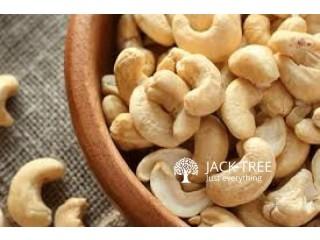 කජු / Sri Lankan Cashew Nut