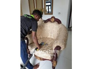Sofa Carpet and Building Cleaning