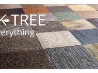 Carpeting & Flooring