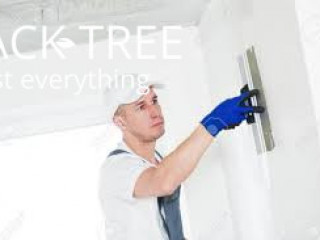 Plastering, Putty And Paint