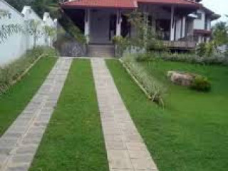 Vinodhya Garden Service and Interlock