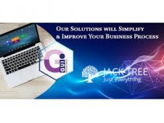 Web Design & Development Professionals