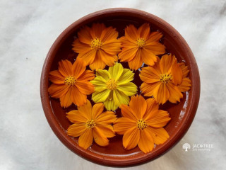 Clay pot for flower decorations