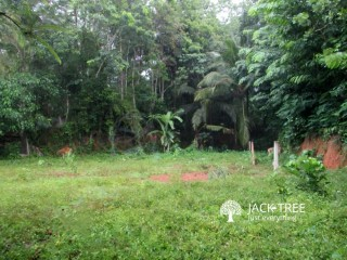 4 ½ Acre Land for Sale