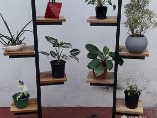 Plant stands and hangers