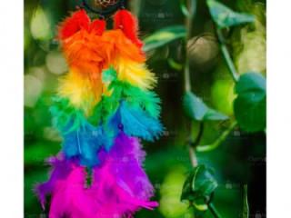Beautiful baby rainbow