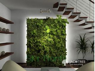 Natural Green Walls