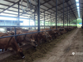 Dairy Farm Electrical Services