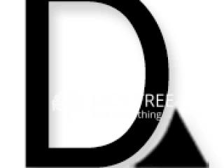 D Solutions Lanka (Pvt) Ltd